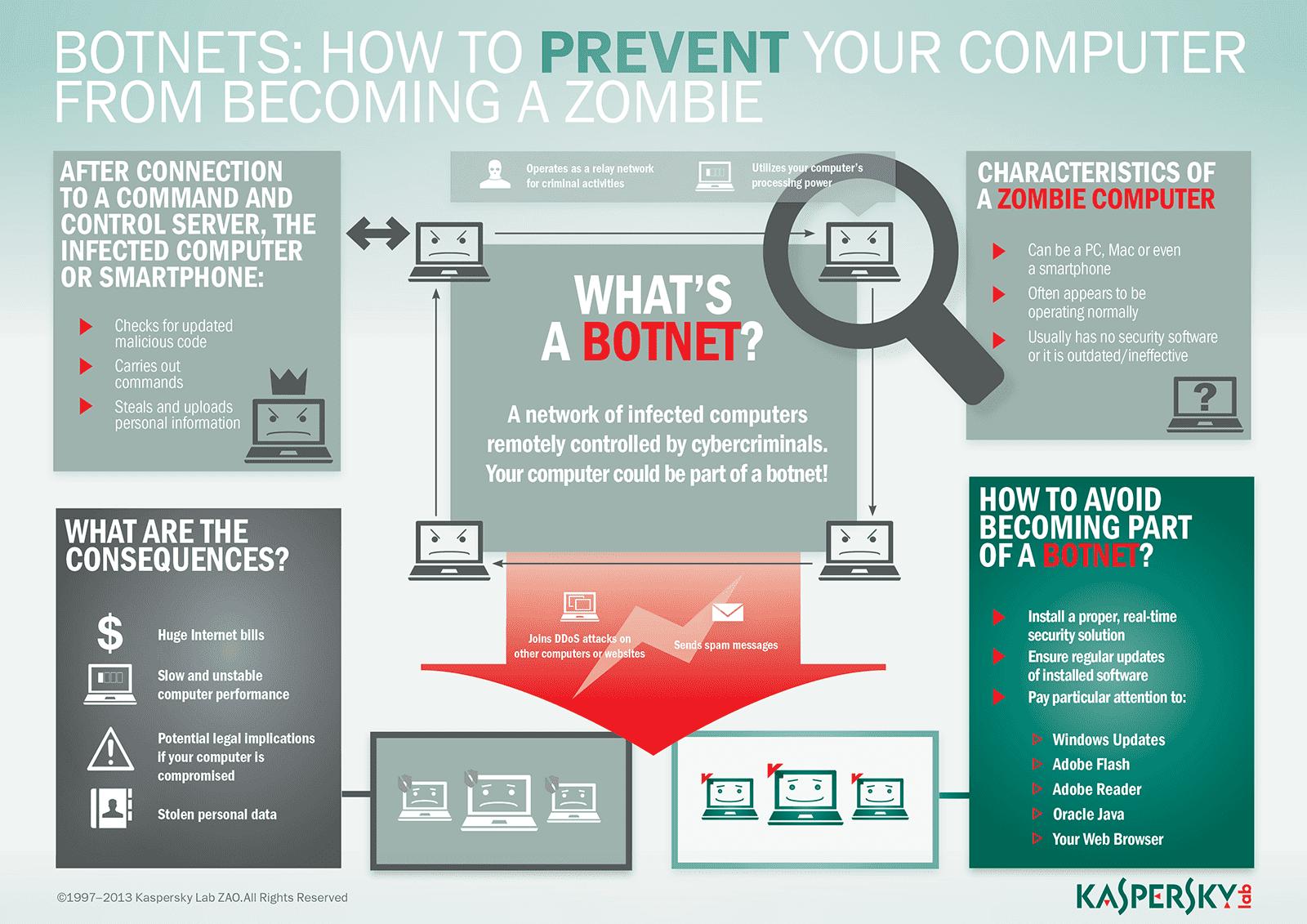Botnet Infographic