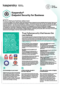 KASPERSKY ENDPOINT SECURITY FOR BUSINESS : FICHA DE PRODUCTO